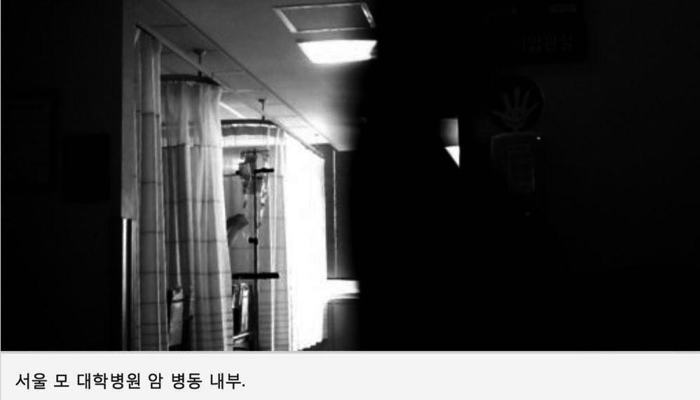 출처:http://news.donga.com/3/all/20161010/80712654/1