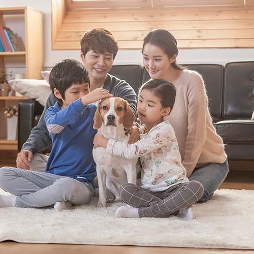 문제행동 가정 방문 상담/교정