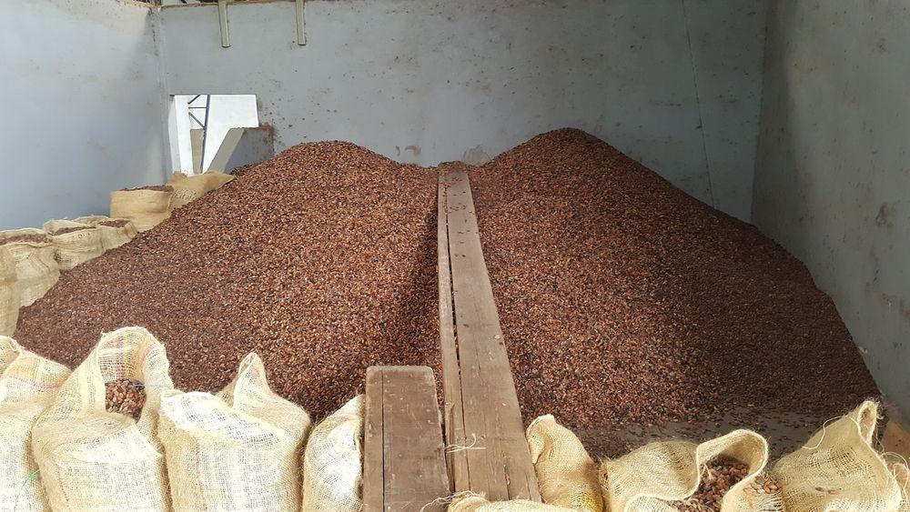 2016 Ecuador Cacao Factory