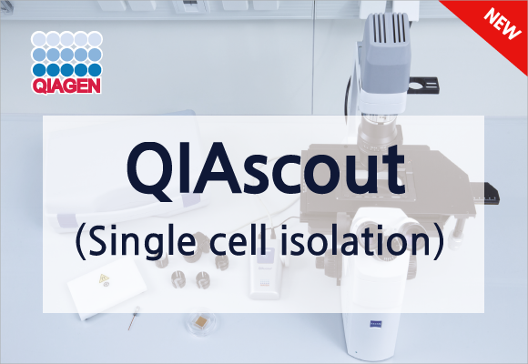 간단하고 효율적인  single cell isolation device