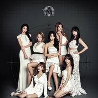 AOA 콘서트 글로벌 모객