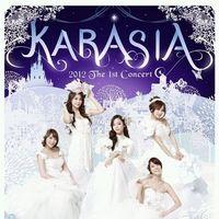 KARA 1st 콘서트 해외 총괄 마케팅
