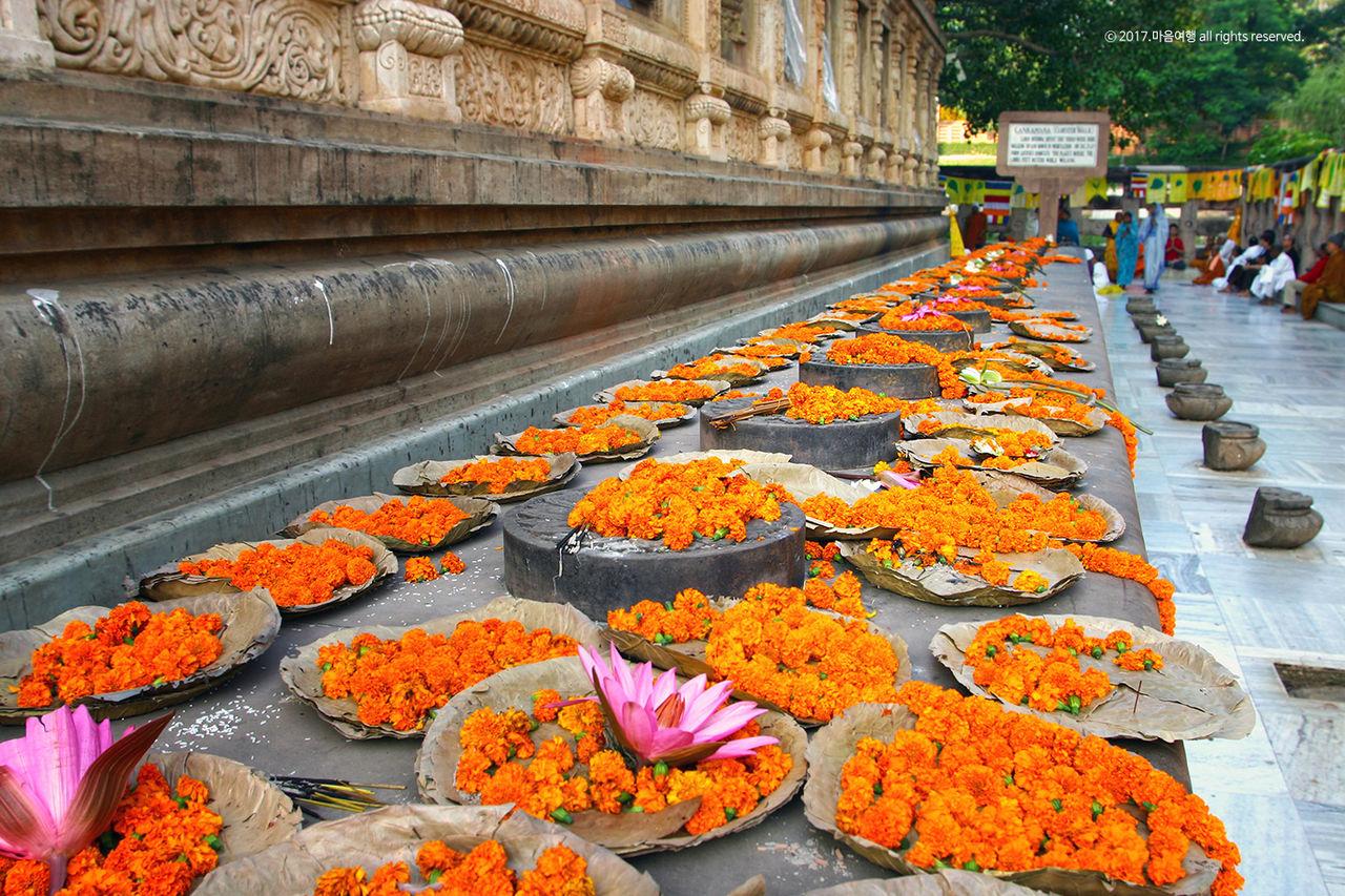 꽃향기 가득한 마하보디 사원