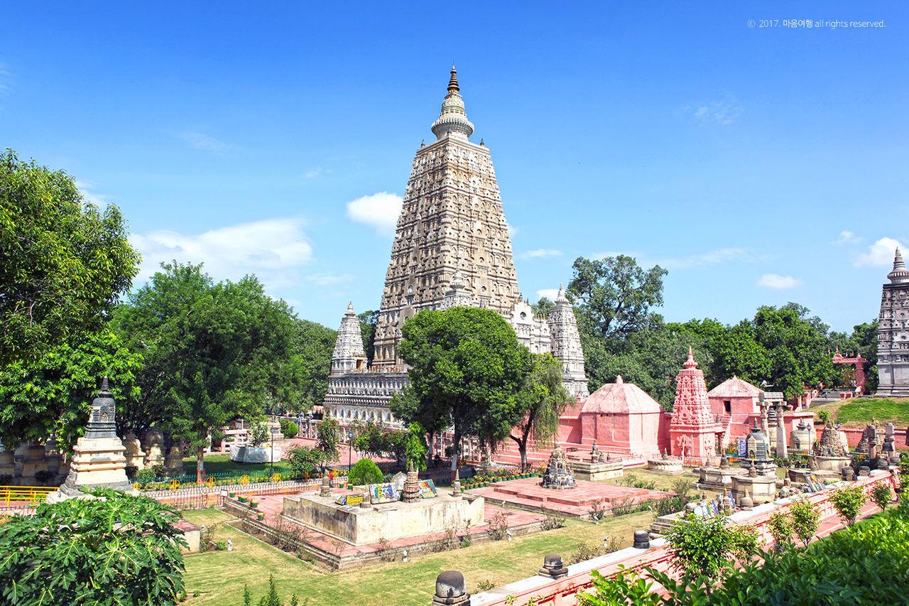 웅장한 모습의 마하보디 사원