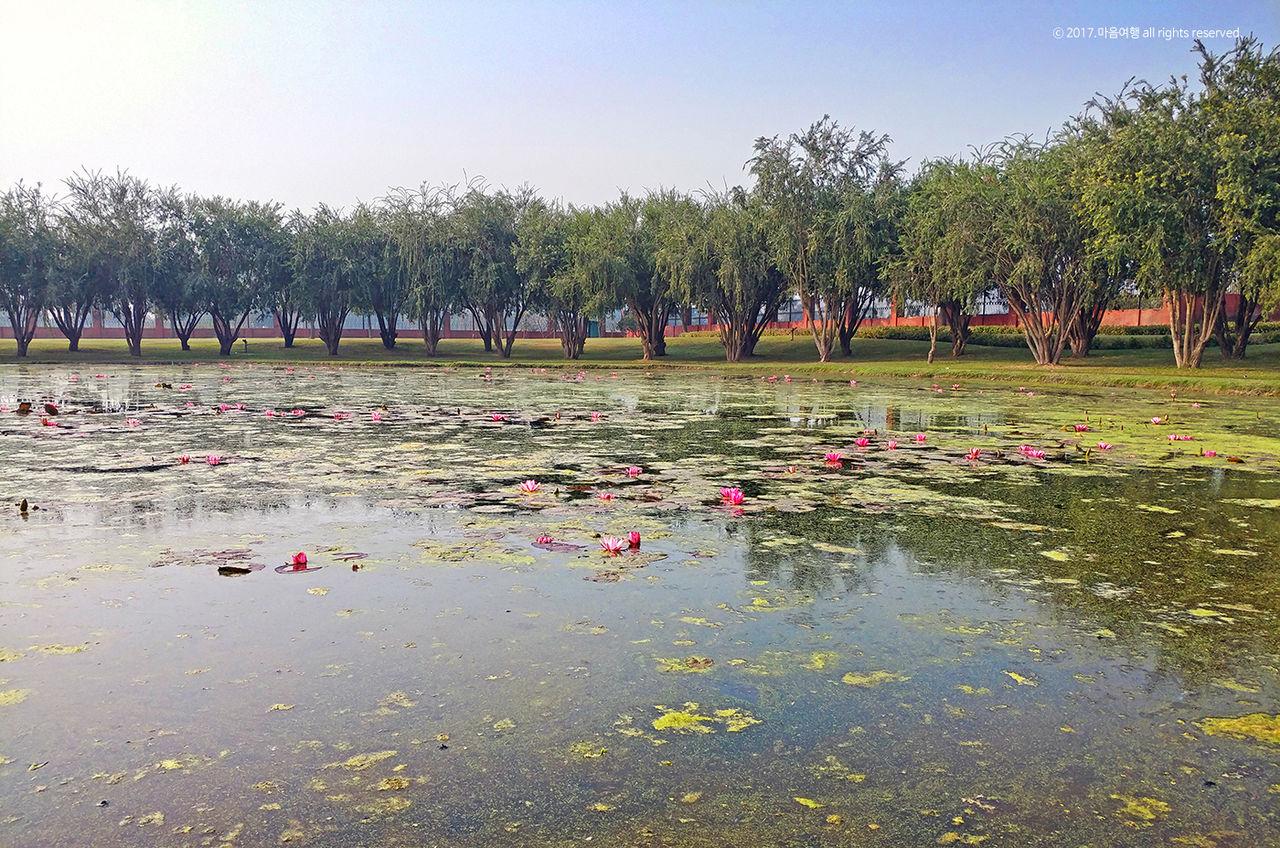카필라성 연못 풍경