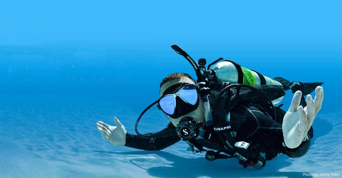 스쿠버다이빙 맛보기. 체험다이빙~