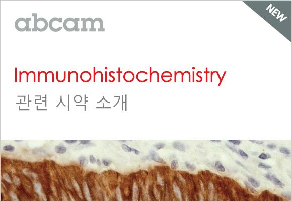 조직 면역 염색(IHC) 에 필요한  시약 리스트