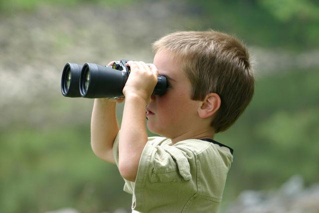 3. 관찰하고 분석하라