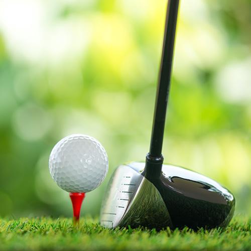 골프장 예약 및 정보
