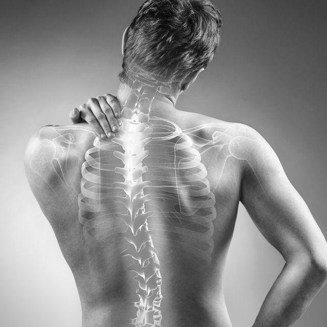 정형외과  Orthopedics