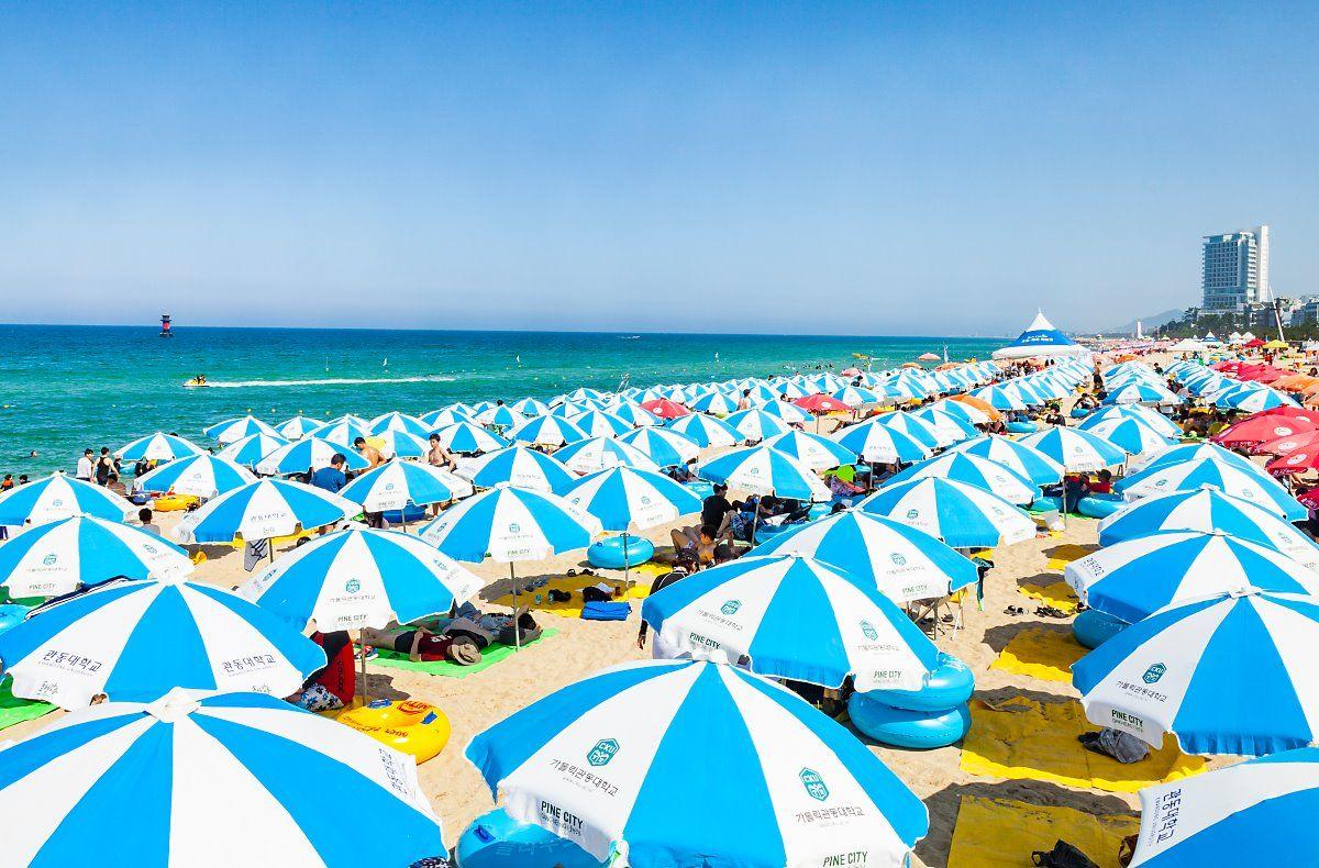 전국 해수욕장 개장 시기 및 여름 축제 정보  </br>   by KTV(네이버포스트)