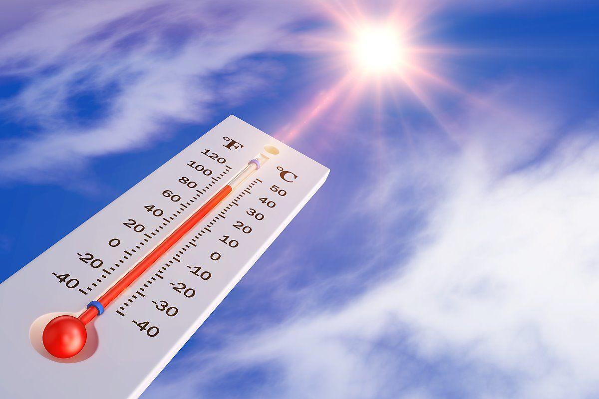 더위를 식히는 꿀팁,  체온을 가장 많이 내려주는 방법은?    </br>   by KTV(네이버포스트)