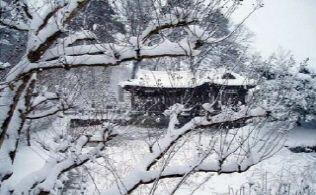 [사진7-02] 활래정과 연지(겨울)