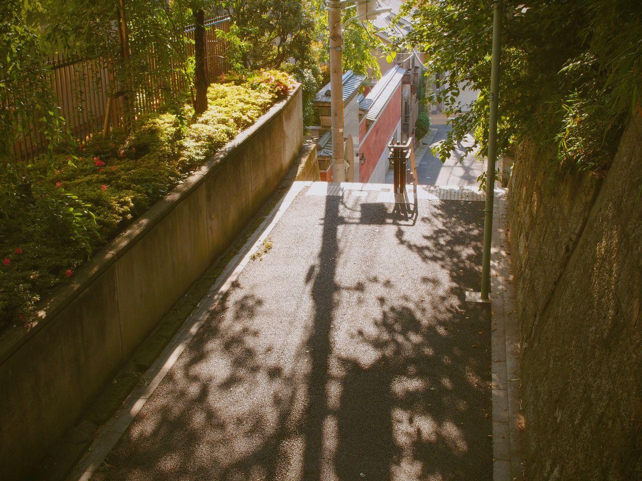 도쿄로 유학을 갔다.<br>다시 그곳에서 여행을 떠난다.<br>너는 떠나 있는데 또 떠나니?<br>그런 질문을 즐겁게 받아들이며.