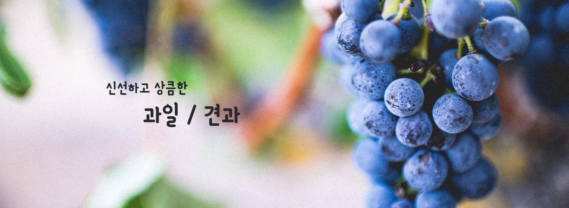 과일 / 견과