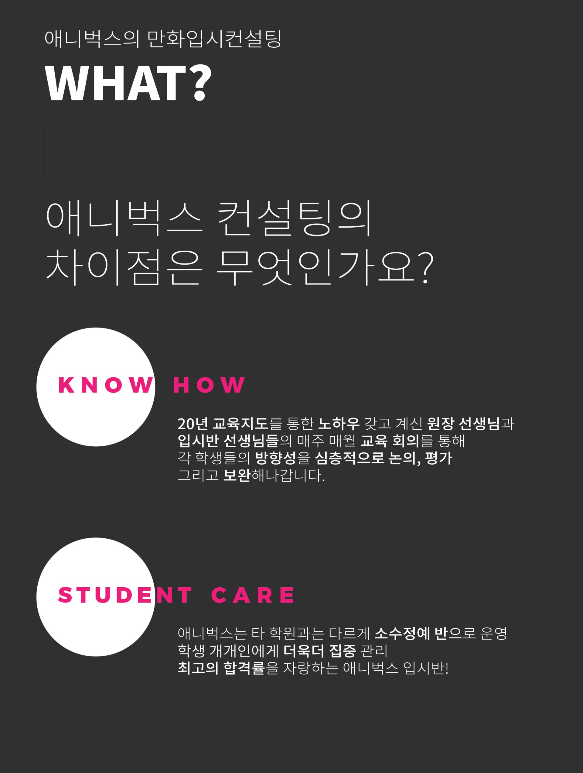 애니벅스 맞춤형 심층 컨설팅