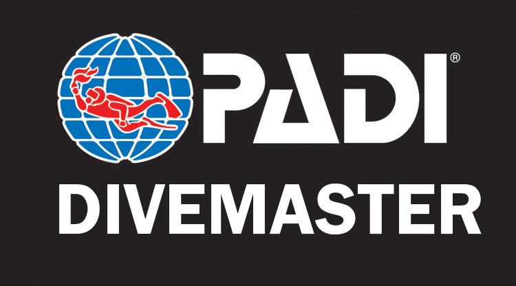 PADI 다이브마스터
