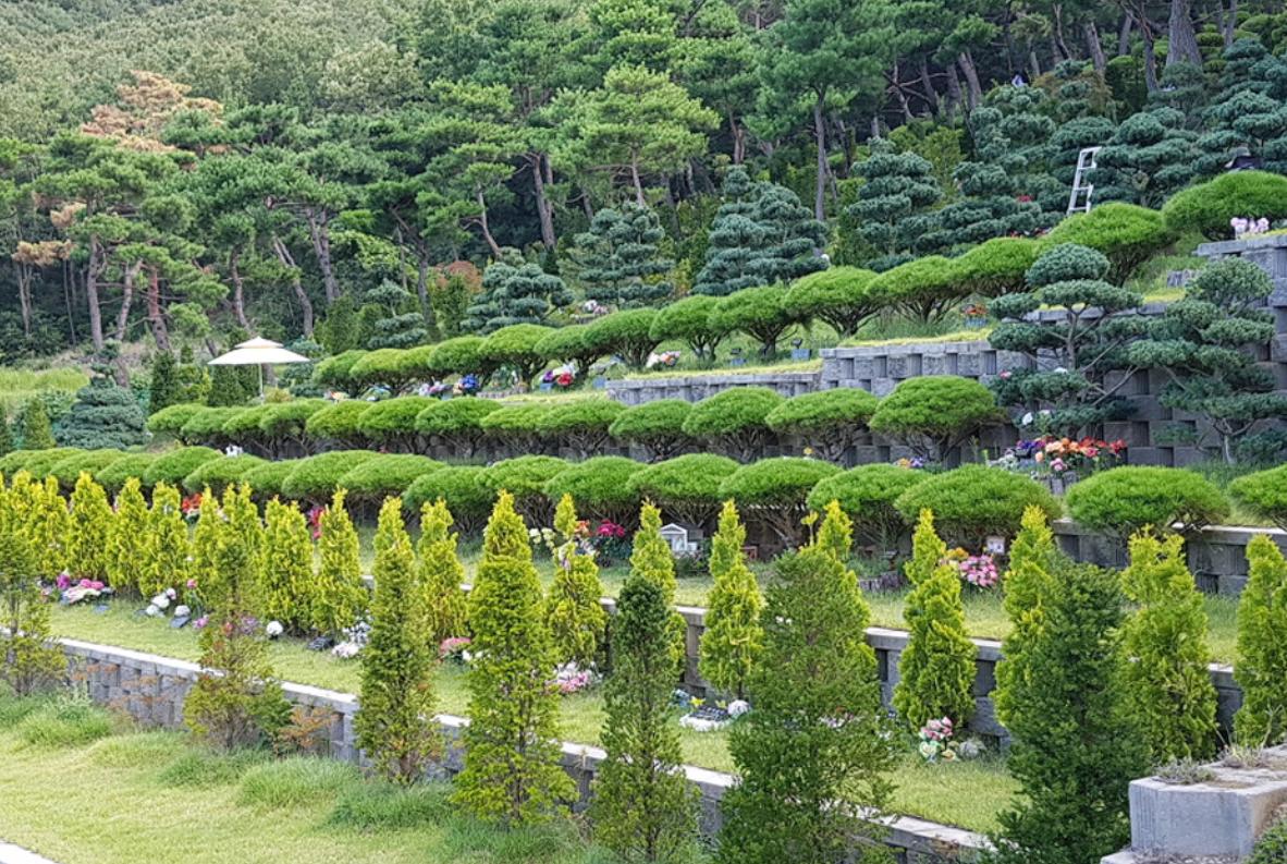 밀양그린피아 수목장