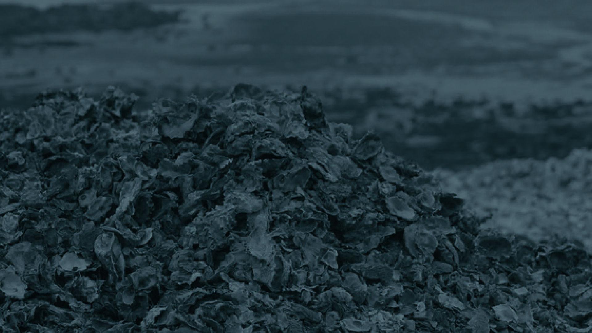 패립, 폐기되는 굴패각(연간 250,000톤)을 재활용하여 불산폐수처리비용 33%절감