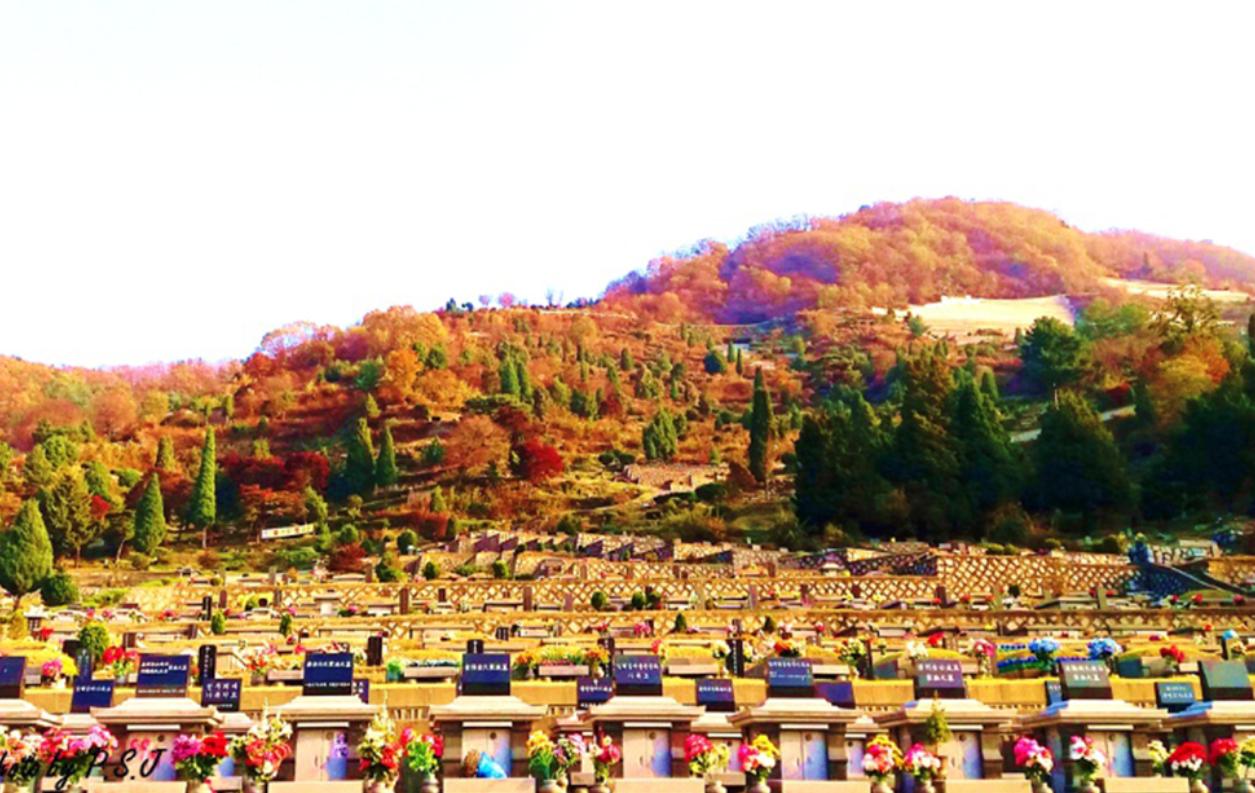 양평 공원묘원