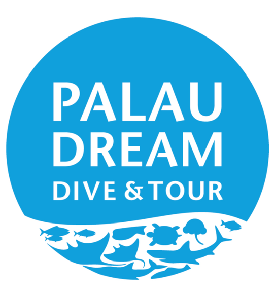 PALAU DREAM DIVER'S TOUR