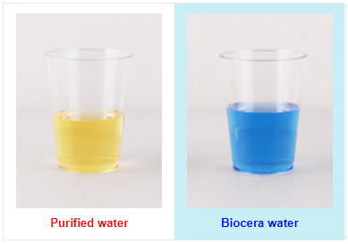 Biocera water ph test