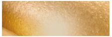 베네카운티 공식홈페이지