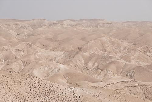 No.190 Desert of Judea / SAIIDA