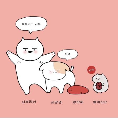 히사시부리냥 (hinyangnyang)