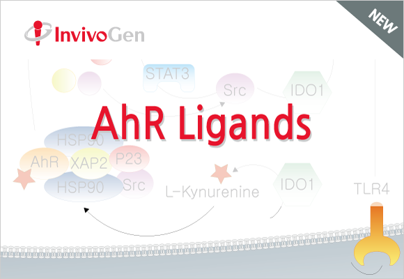 Aryl hydrocarbon receptor(AhR) Ligands 소개