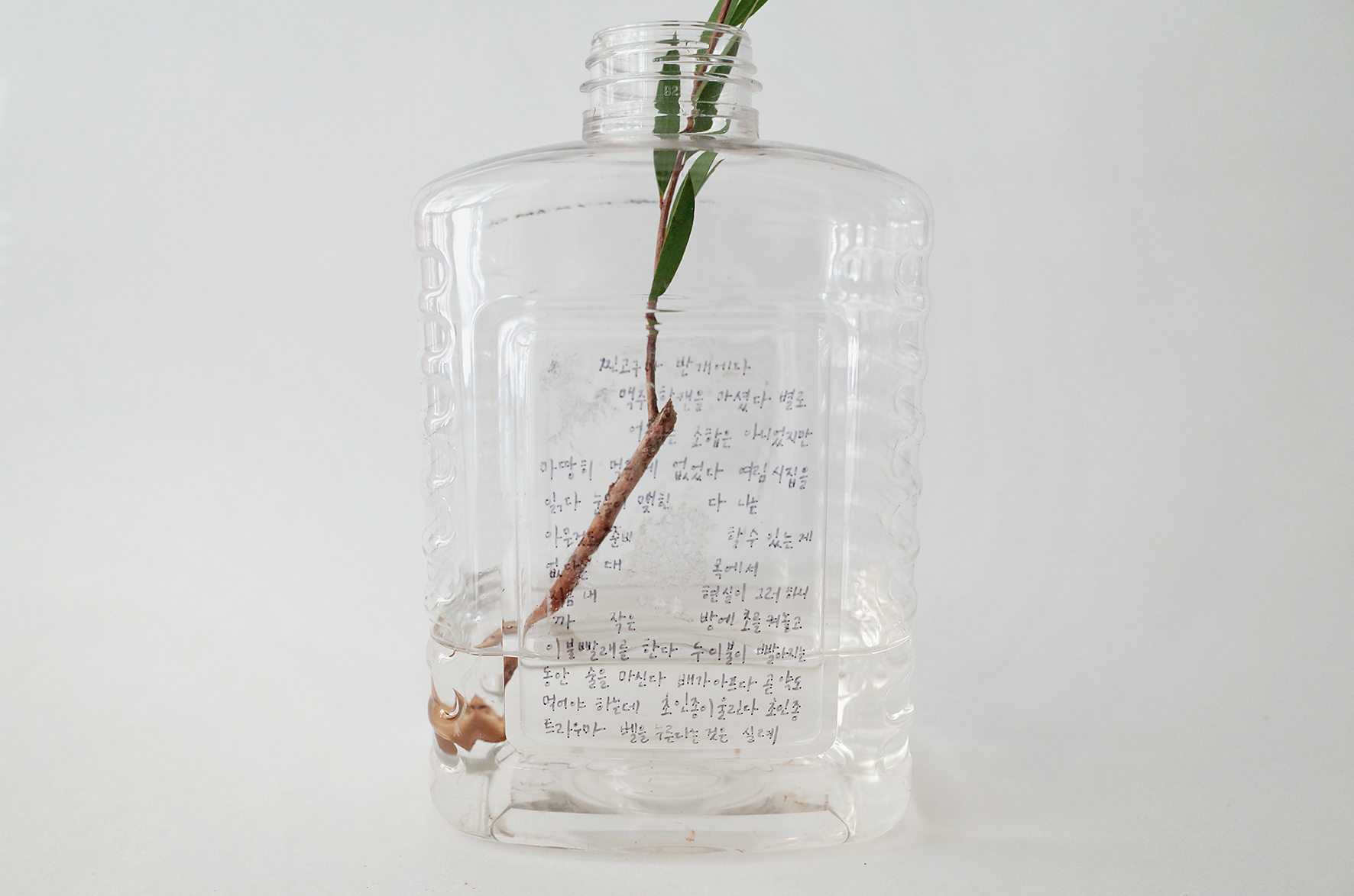 Texts written by hand / Re-used Bottles,  Plastics, Variable Sizes
