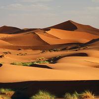 10. 두바이/중동여행