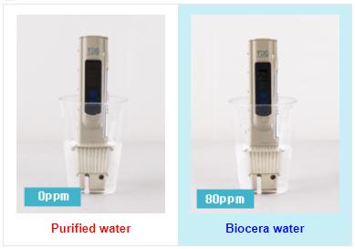 Biocera TDS test
