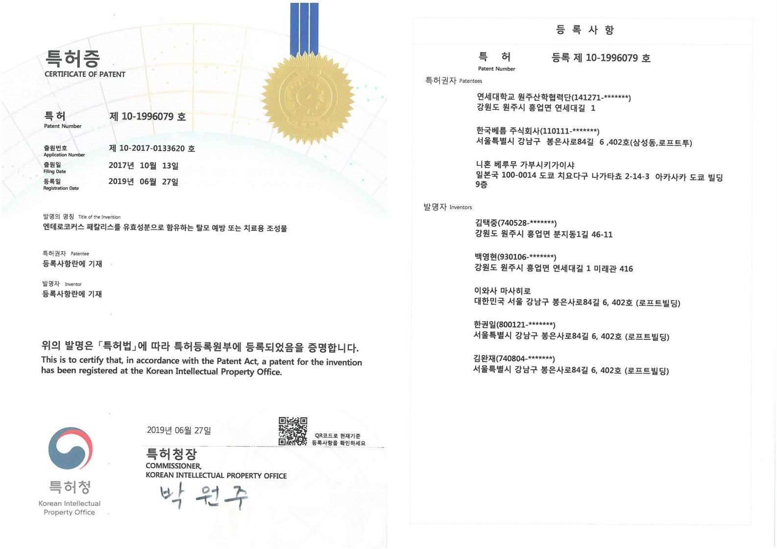탈모의 예방 및 치료에 관한 특허