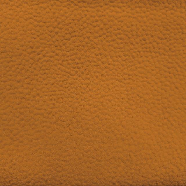 #Freesia Yellow <br>프리지아옐로우<br> RB1-6258