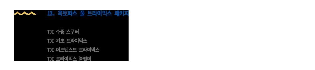 TDI 테크니컬 옥토퍼스 풀 트라이믹스 패키지 교육 안내