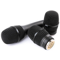 DPA [2028  Vocal Microphone]