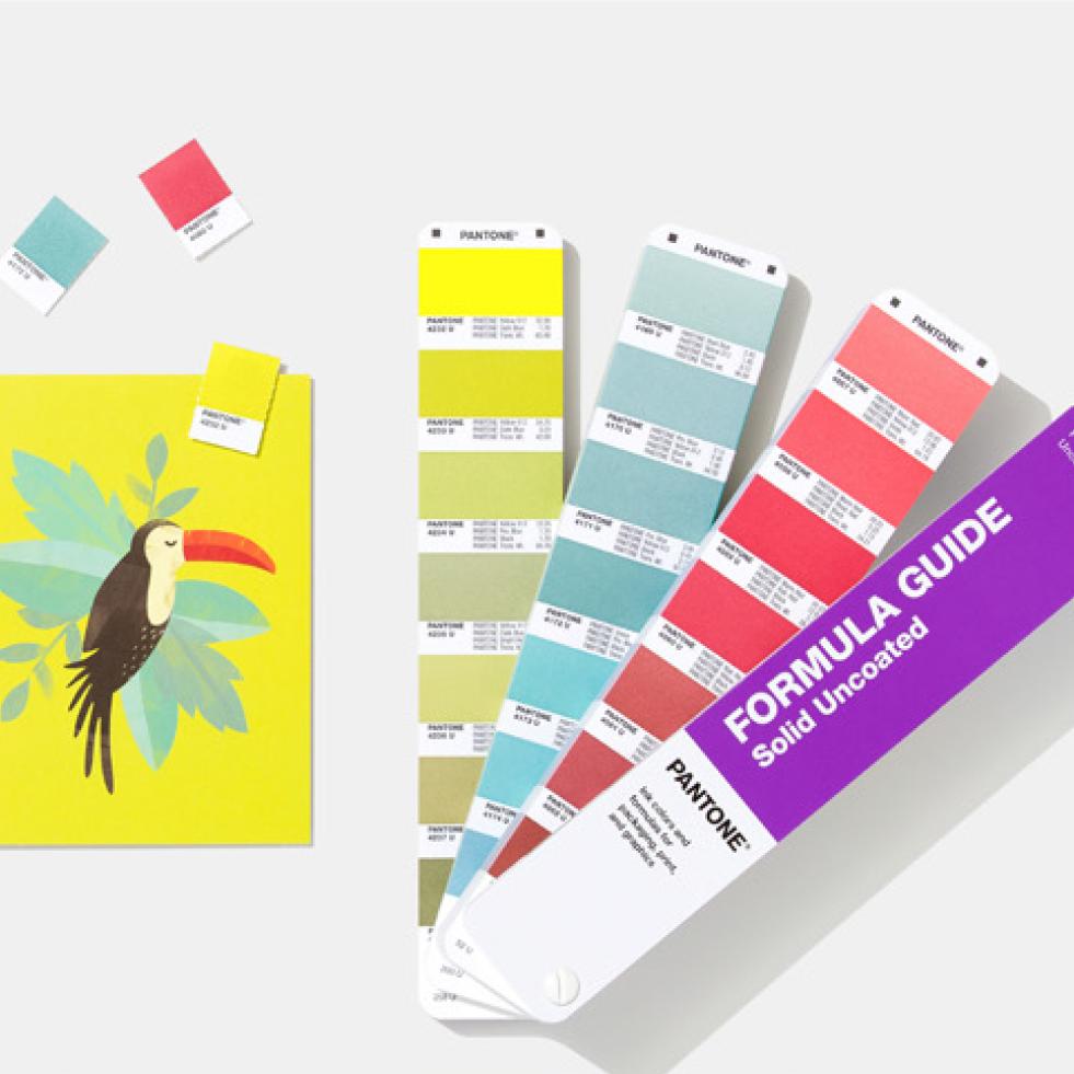 Color Universe with Pantone Color Institute (PANTONE®)