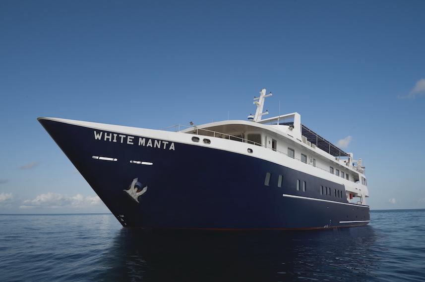 NEW WHITE MANTA