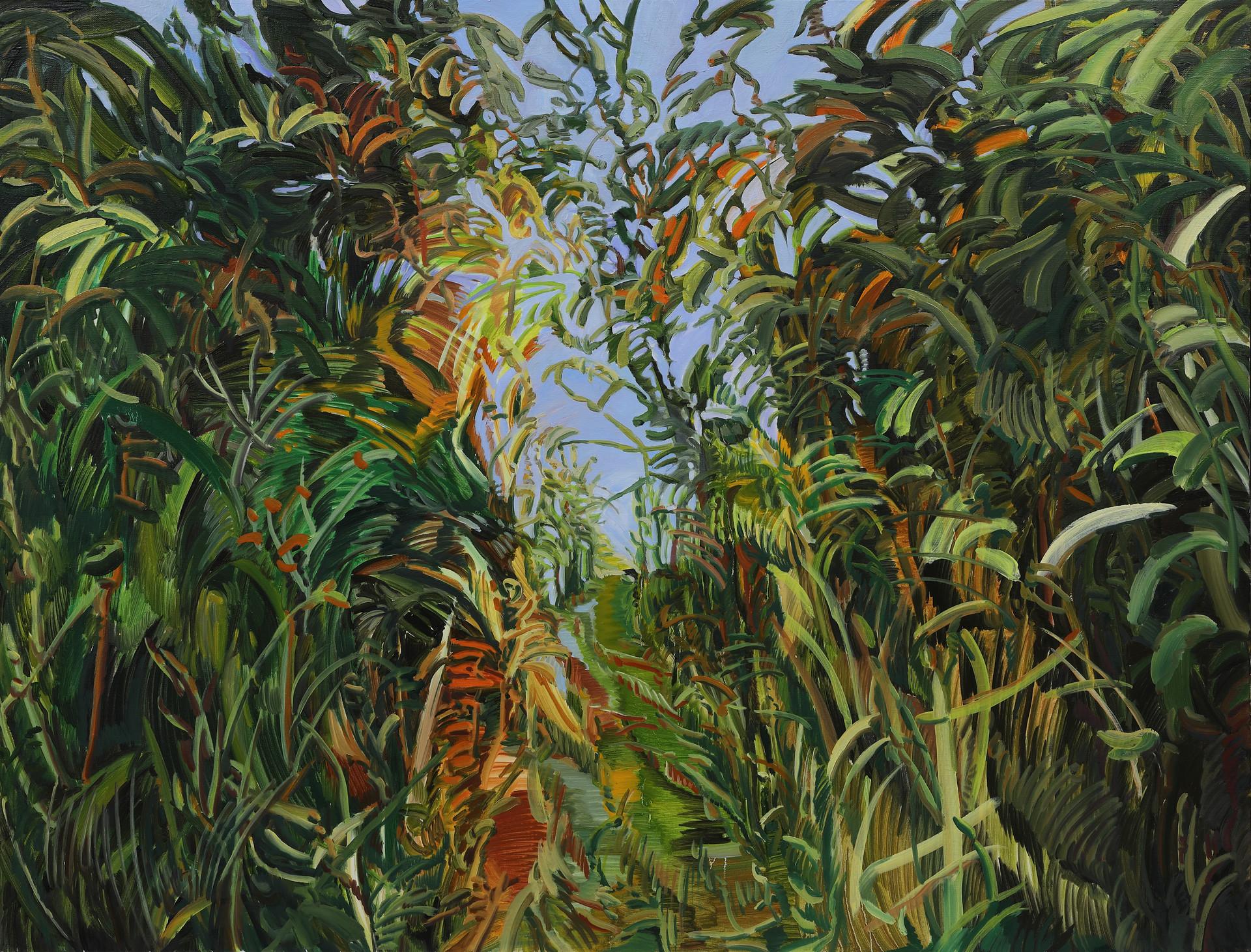 Green Wind, Oil on canvas, 91cm x 116.8cm, 2019