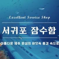 서귀포 잠수함[우수관광사업체]