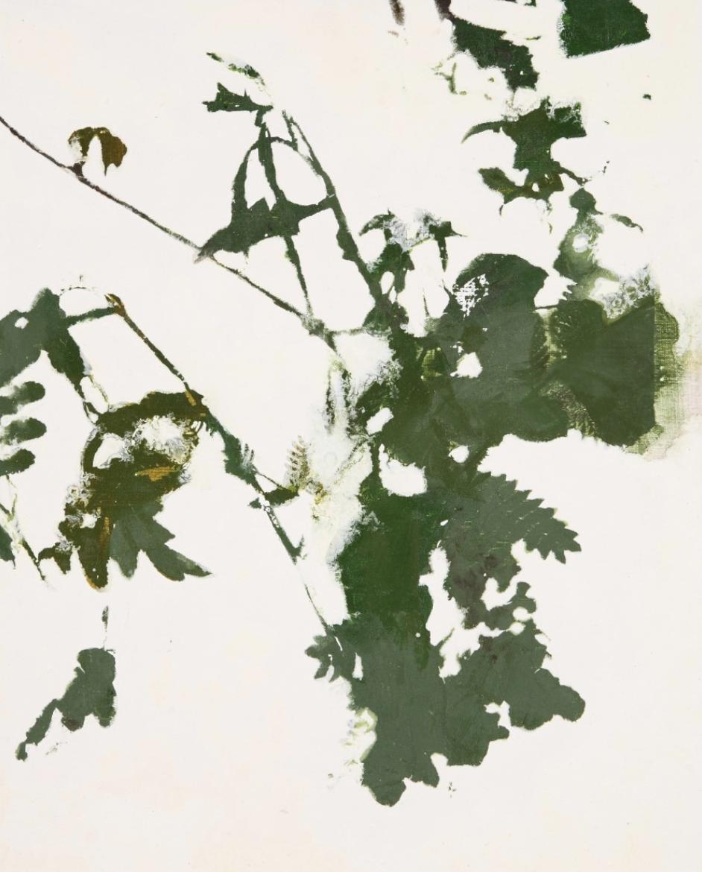 Skin deep-W1, oil on canvas, 41x53cm, 2012