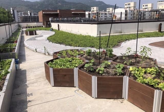 Cartas welfare facility roof design