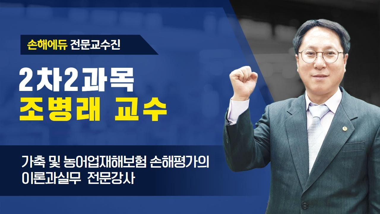 손평에듀 조병래교수