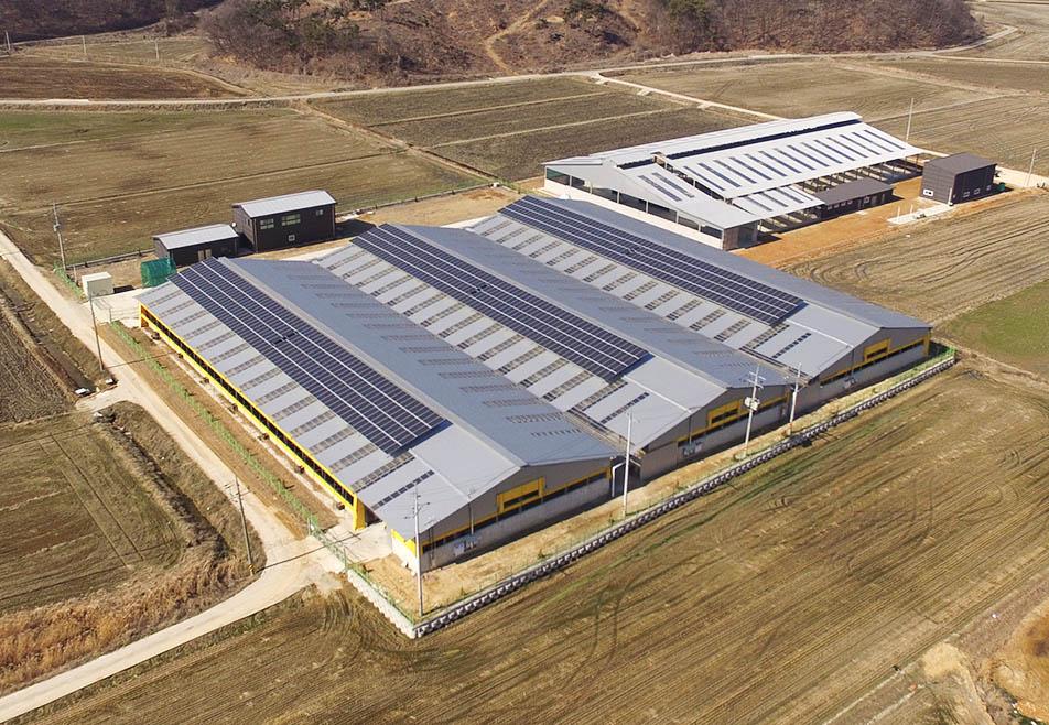 창고, 공장 옥상 위 태양광발전소