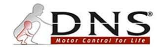 DNS 로고