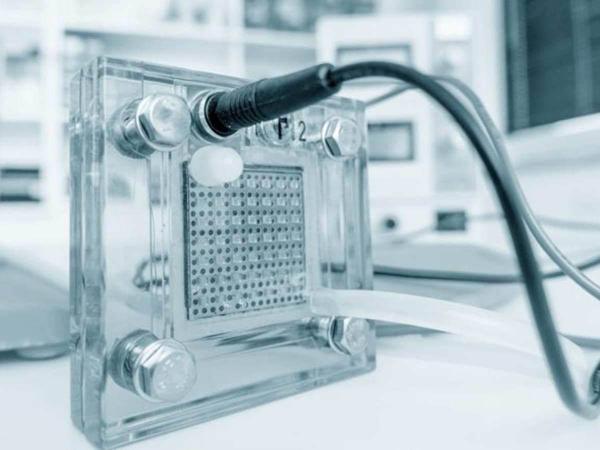 친환경 수소 연료전지 기술