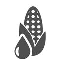 옥수수전분