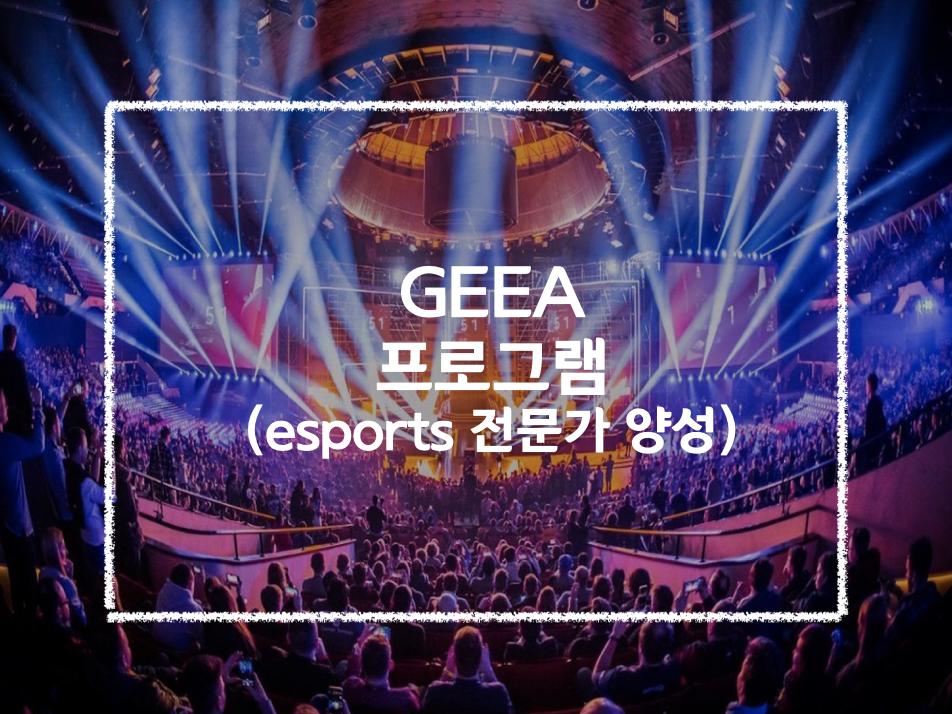 Esports Program 이스포츠 전문 국제학교