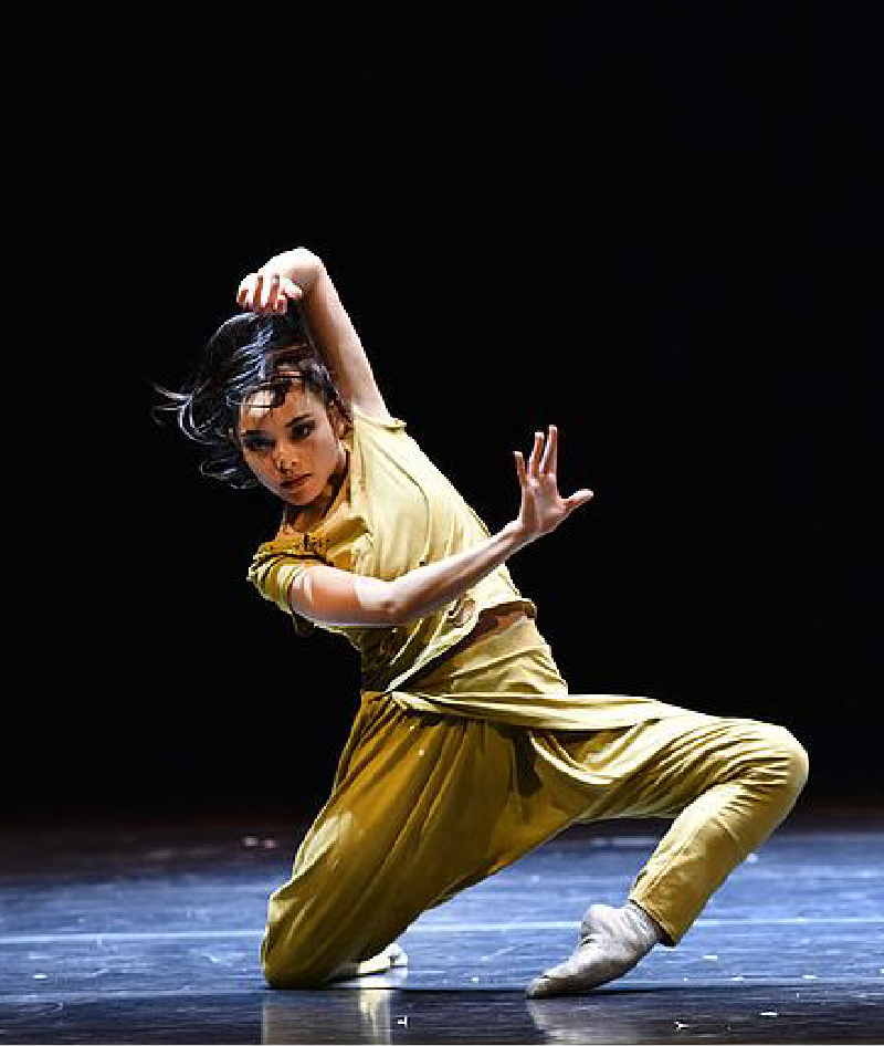 Photo Bremerhaven Ballet / Dance Ting-Yu Tsai
